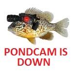 PONDCAM STATUS
